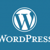 XSS Vulnerability In WordPress - Update Now