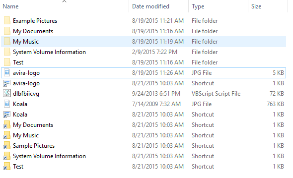 """Directory view with """"Hidden System files"""" shown."""
