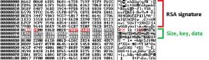 Serialized Dridex binary data