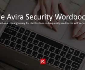 The right word for IT is in the Avira Wordbook