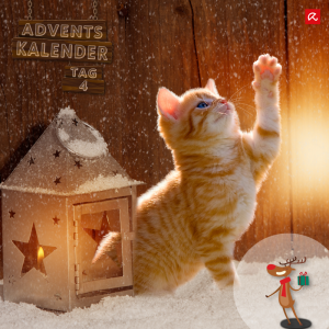 Avira Adventskalender - Tag 4
